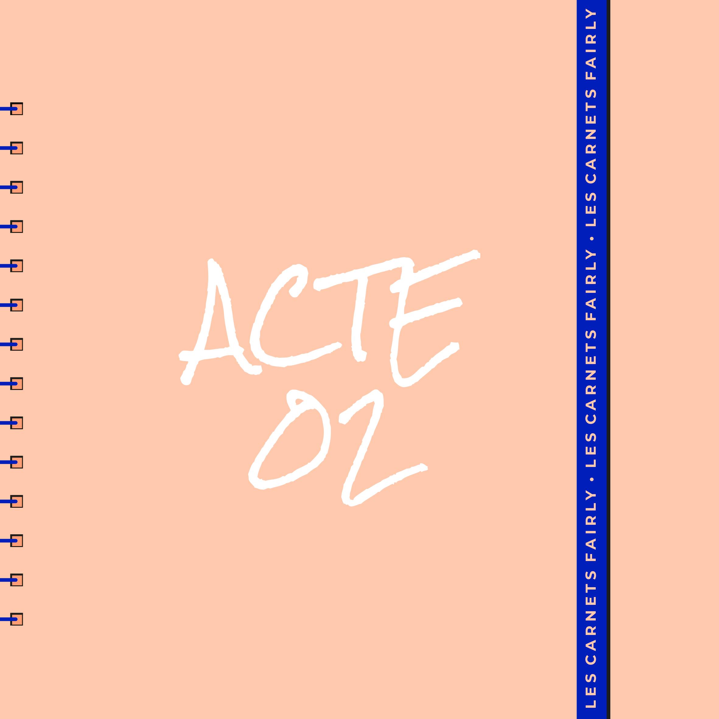 CARNETS-FAIRLY_ACTE02_le-rebond vignette